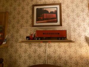 mushroom-truck-display-case