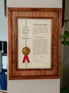 Patent frame